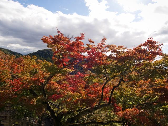 797-Japan-Kyoto