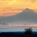 Mt. Hood Sunrise by Gary Grossman