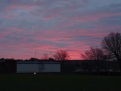 Red Devon sunrise