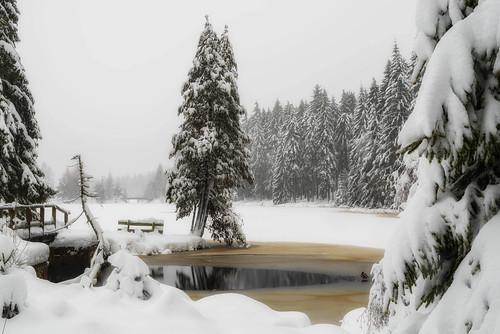 It's Winter! - Lake Fichtelsee, Upper Franconia