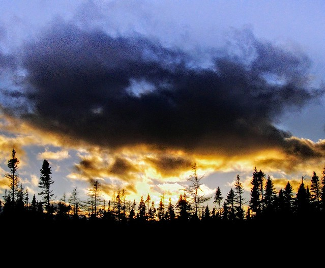 Sunset in the boreal, Sony DSC-T90
