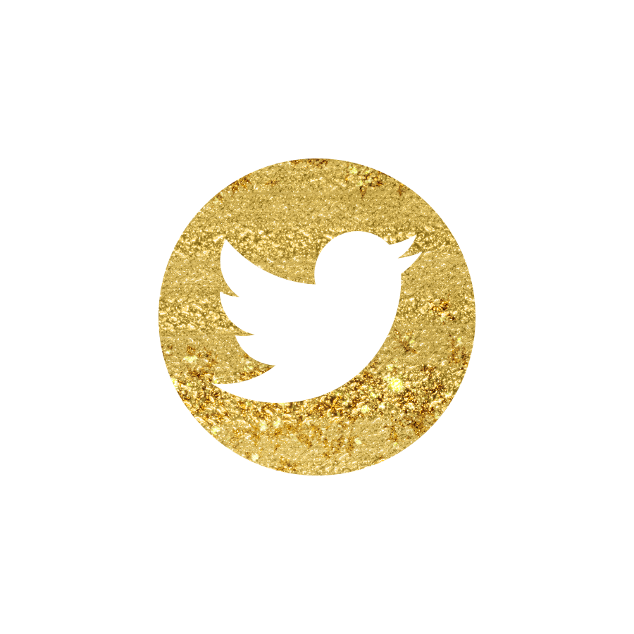 Pokmon_Twitter_Pokeball_Logo_by_CanasOminous