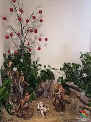 Preparação do Natal