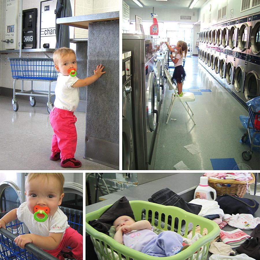 Bug-laundro-mat-history-1