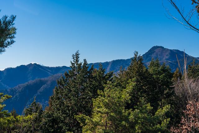 大岳山と馬頭刈尾根@日の出山・・・大怒田山から僅かに富士