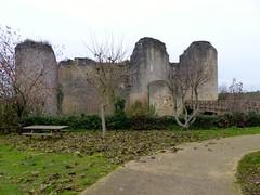 Quel est ce lieu? le château de Gençay dans la Vienne - Photo of Brion