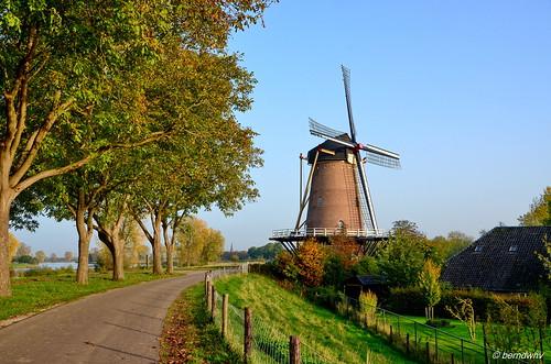Niederlande / Provinz Noord-Brabant / Dieden / Stella Polaris / Baujahr: 1866