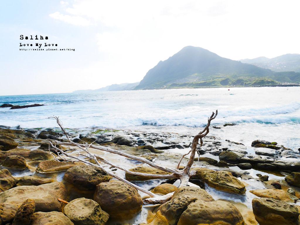 新北北海岸一日遊瑞芳必拍好玩景點推薦象鼻岩打卡 (2)