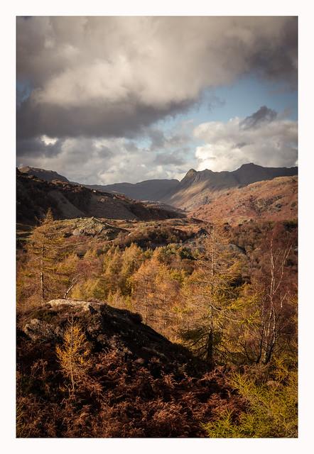 Holme Fell - Cumbria I