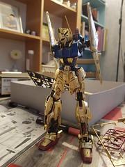 Hyaku-shiki  Custom of my son Dov 12 years old
