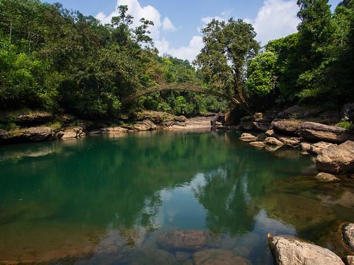 mawlynnong-hike-bamboo-bridge-1