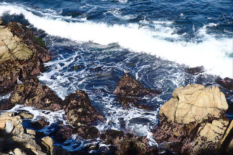 Incoming wave, Cannery Point, Point Lobos
