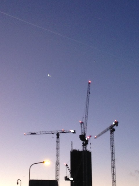 Moon, dawn and cranes, Apple iPhone 5c, iPhone 5c back camera 4.12mm f/2.4