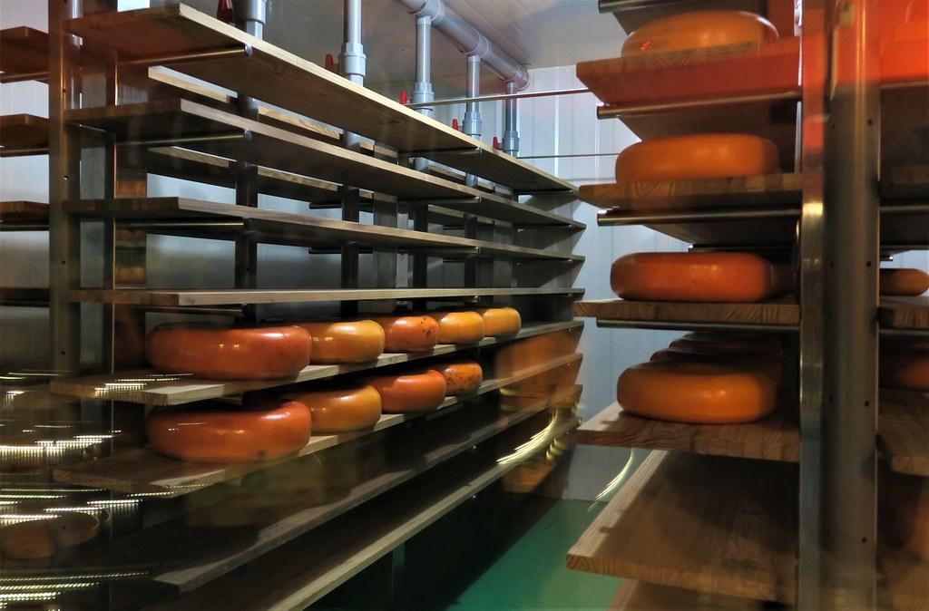 竹南奶酪觀光工廠 (25)