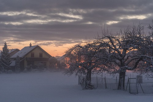 misty and snowy morning in Busswil