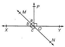 NCERT Solutions for Class 9 Maths Chapter 6 Lines and Angles 1