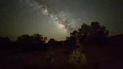 Night in the Utah Desert