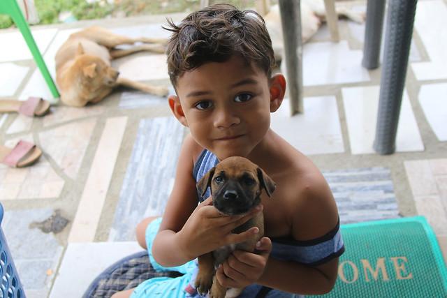 puppy love, Canon EOS 7D MARK II, Sigma 20mm EX f/1.8