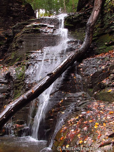 The Third Falls in Barnes Gully, Onanda Park near Canandaigua, New York