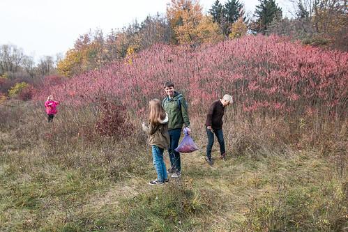 autumn nevzglyadovskozak poltava ukraine travel nature family mashenko forest people
