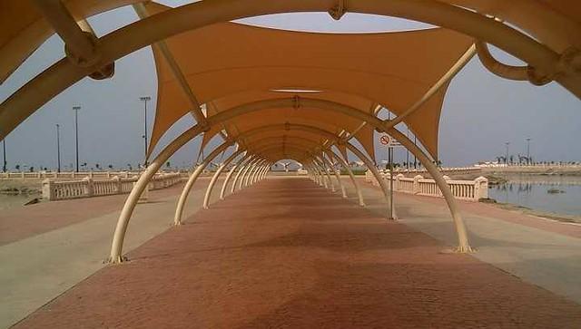 4811 7 Reasons families living in Jeddah should visit Dhaban Marine Park 01
