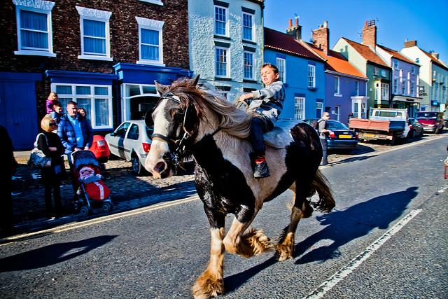 Gypsy Horse Race-4795