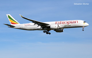 350.941 ETHIOPIAN AIRLINES F-WZFH 259 TO ET-AVE NEW YORK STICKER CELEBRATING OUR 10TH 350 05 12 18 TLS