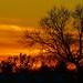 sunset.Frodsham