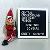 #caught! #elfbehavedbadly #elfontheshelf #prisonescape Image description: toy elf aka Marzipan Snowfig sitting next to mock up of a prisoner identification board in a prison cell. White letters on black background.