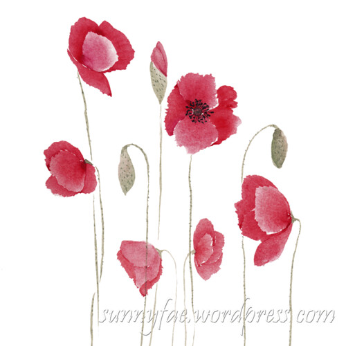wild watercoloured poppies