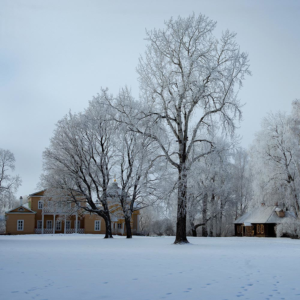 Зимние выходные с детьми в сказочных «Тарханах» – это великолепный отдых, прогулки по заснеженным тропинкам, незабываемые балы и театрализованные постановки