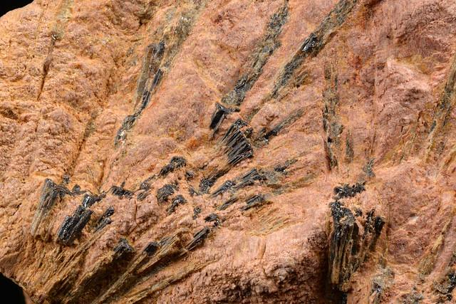 イットリウム河辺石 / Kobeite-(Y)