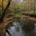 Autumn Color along Lick Creek - Southeast of of Paoli in Orange County, Indiana