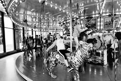 Museum Carousel
