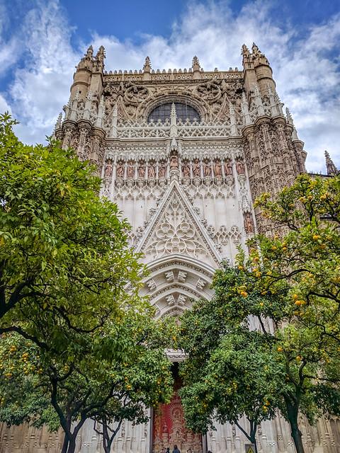 Catedral de Sevilla from the orange grove