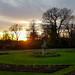 Sunset over Nostell Priory rose garden