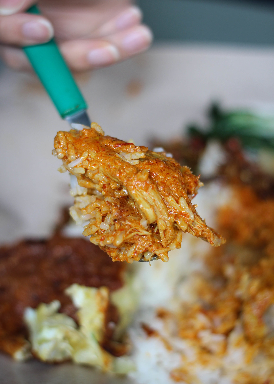 290_Indonesia_Chicken Curry