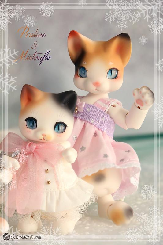 ✰ Ma famille de kitsune (p. 20) - Page 19 45850457794_527fa2e469_c