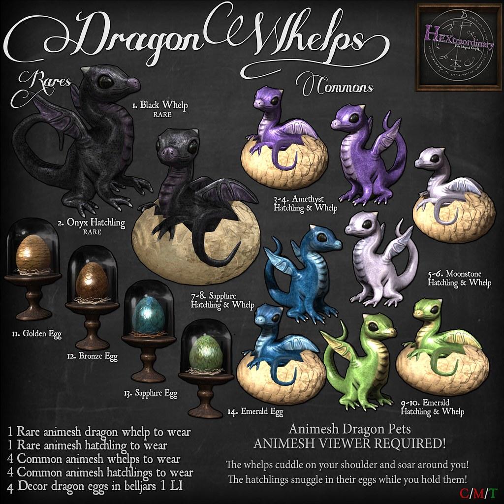 Dragon Whelp Gacha Key