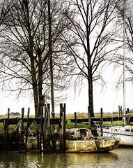 Abandoned Boat.  Day 246/365 - Photo of Sainte-Ramée