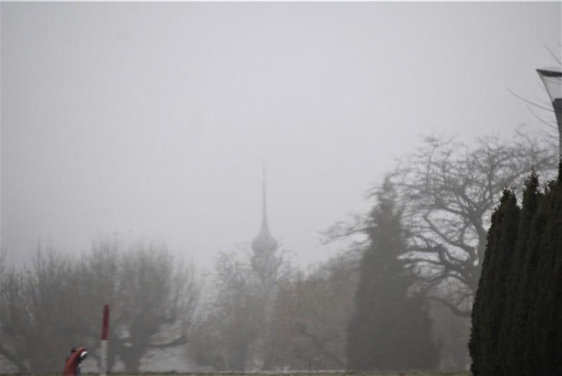 Misty 23.11 (2)