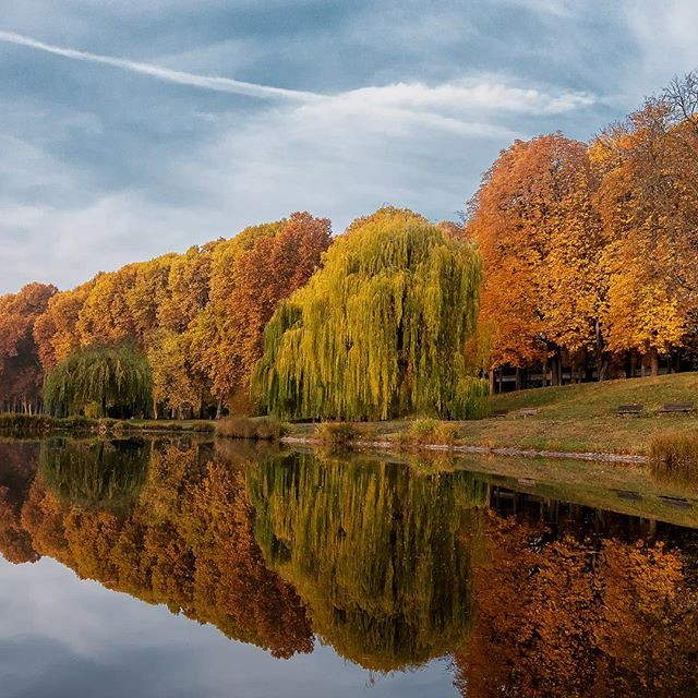 Reflektionen am Inselsee Pt. 2🍁 . #sunrise #sonnenaufgang #inselsee #schlossgarten #schlossgartenstuttgart #rosensteinpark #rosenstein #park #herbst #autumn #herbstliebe #yellow #reflection #reflektion . #stuttgart #stuggi #stuggiliebe #stuttga