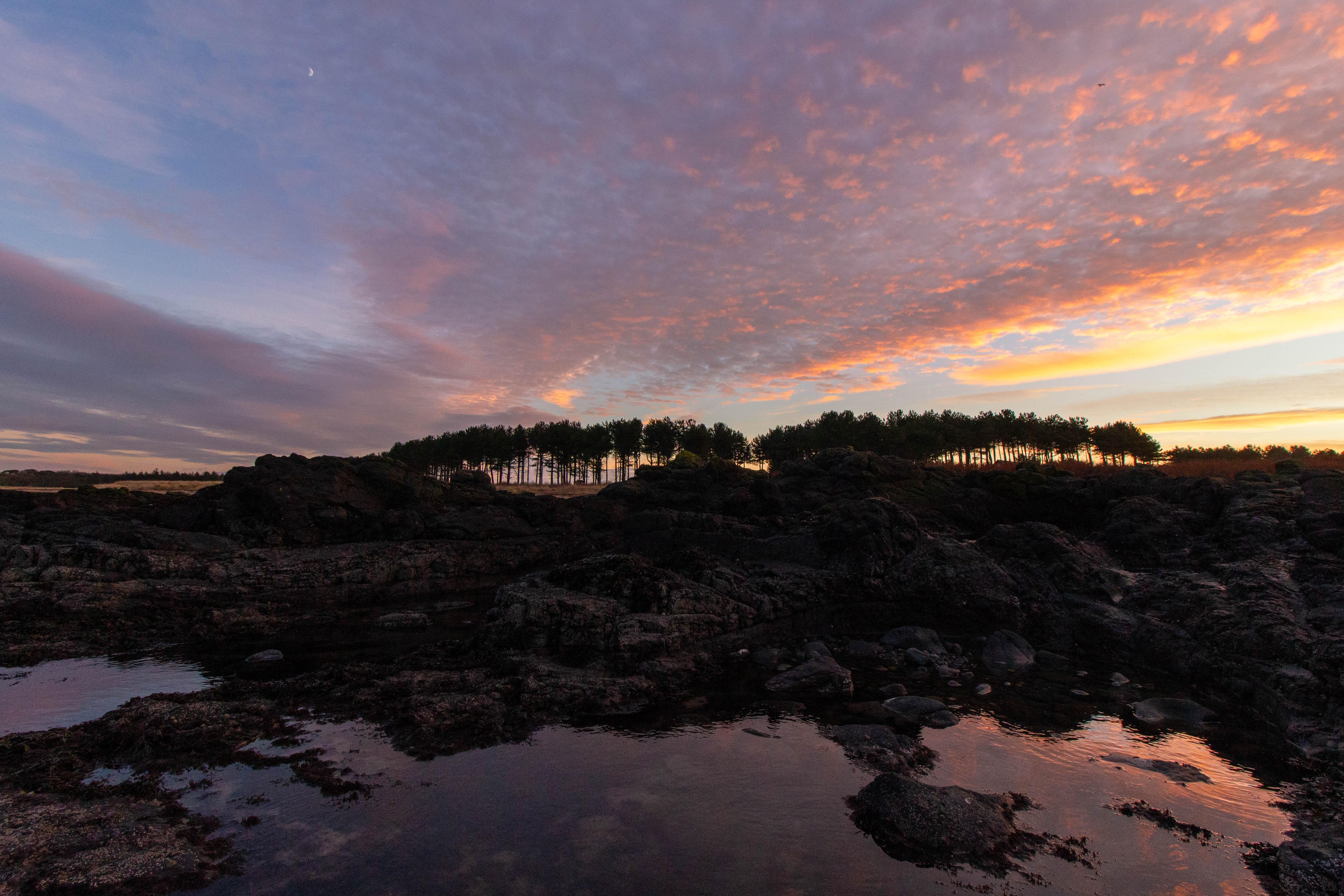 Purple sunset at Yellowcraig Beach, East Lothian