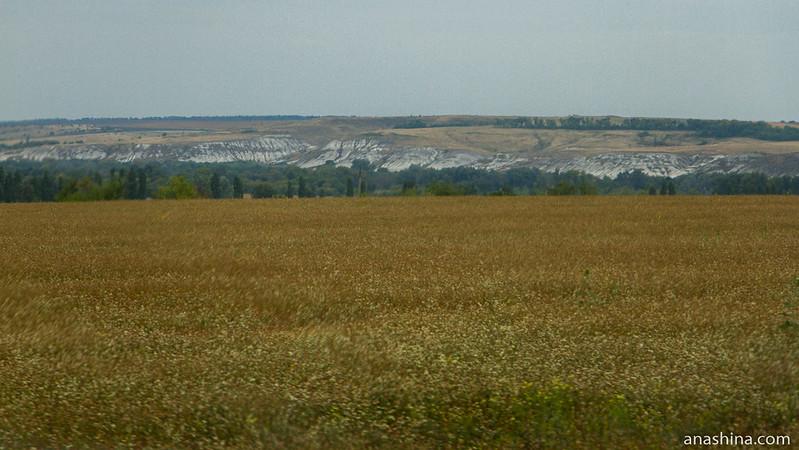 Меловые горы, Воронежская область