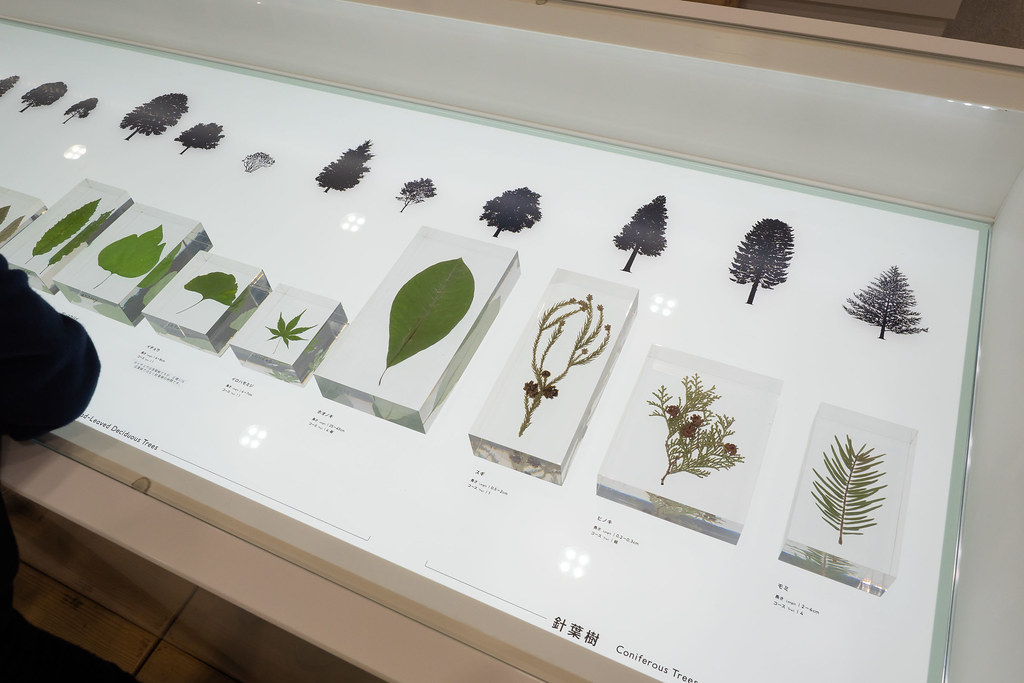 TAKAO_599_MUSEUM-18