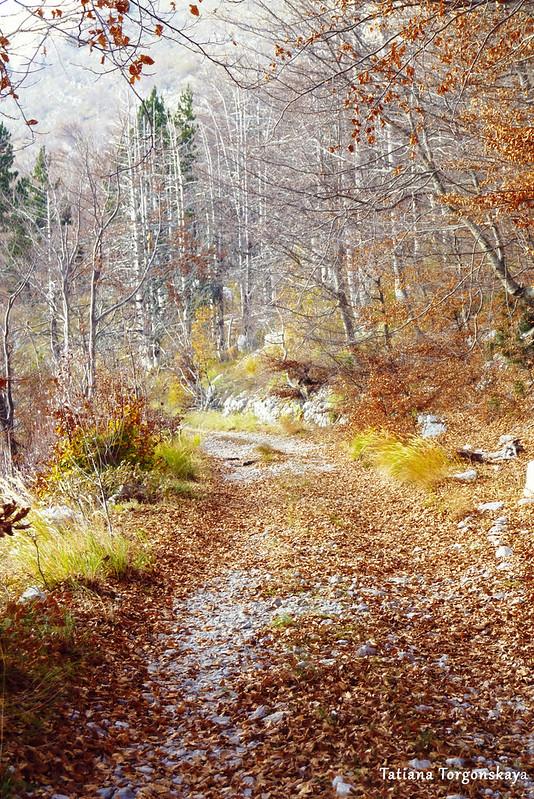 Осенний пейзаж в окрестностях Врбаня