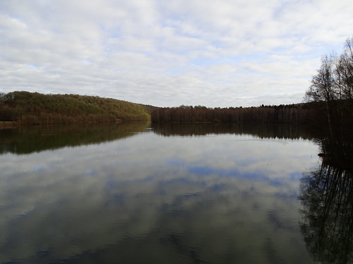Lac du Ry Jaune