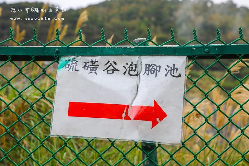 北投旅遊,北投景點,台北旅遊,台灣旅遊,硫磺谷溫泉泡腳池,陽明山旅遊 @陳小可的吃喝玩樂