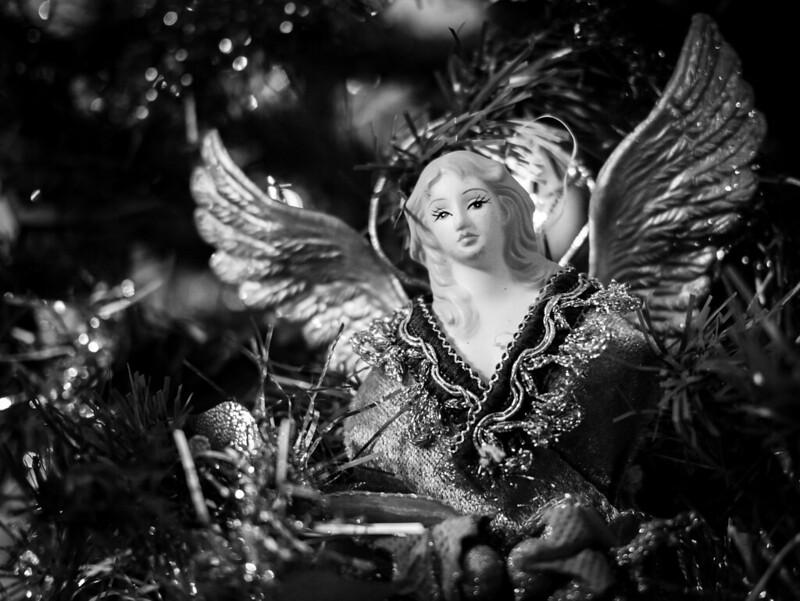 Transgression de Noël 46412980882_2a31f4a18b_c