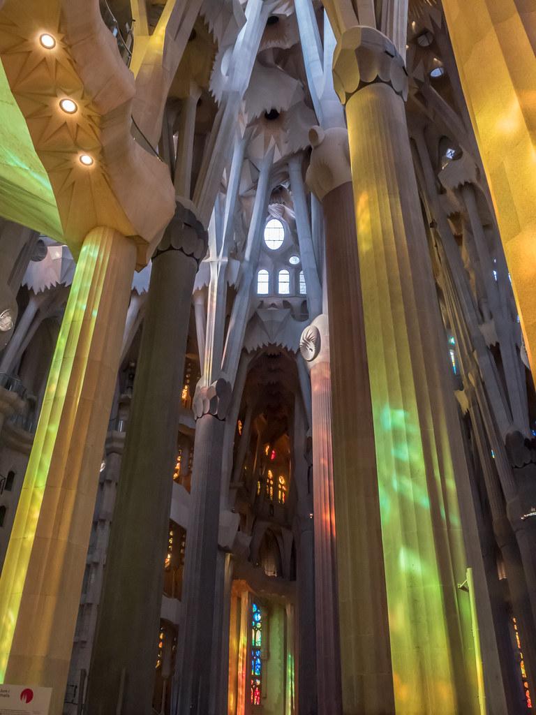 Dans la forêts de la Sagrada Familia... 31172661347_1d99cacddd_b